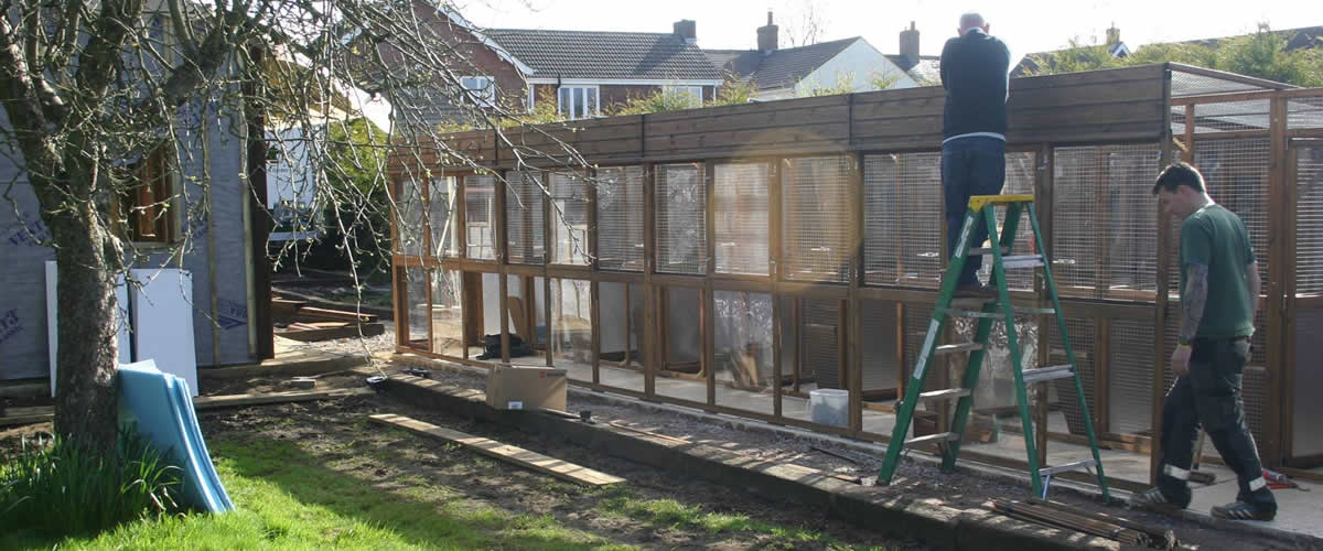 cattery chalet construction underway
