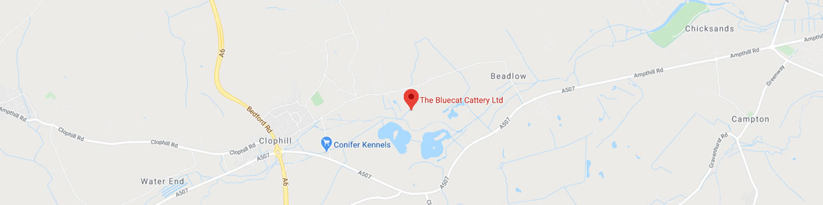 The Bluecat Cattery Clophill Map